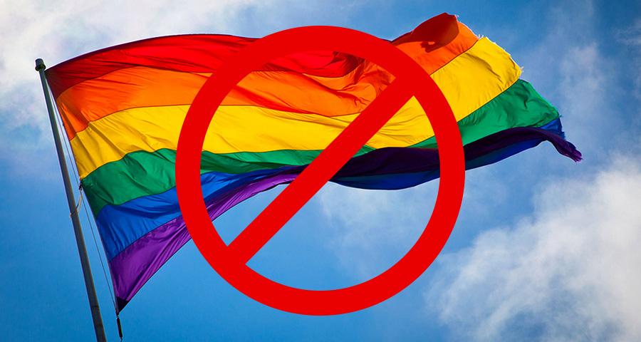 Ирина Алфёрова высказала тревогу о влиянии гей-культуры